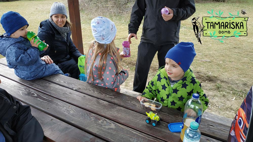 Szabadtéri kincskereső játék - Tamariska domb - Királyerdő kincsei