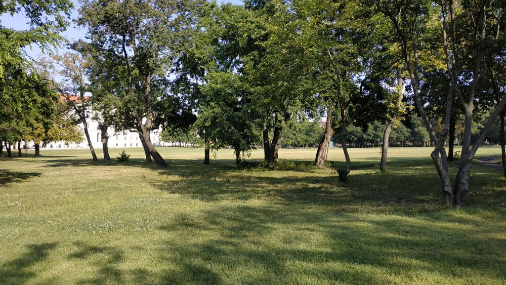 Hatalmas zöld mező a szabadtéri családi kikapcsolódásokért az Orczy Parkban
