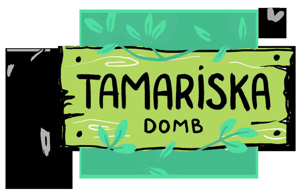 Családi kincskereső játék a Tamariska dombon